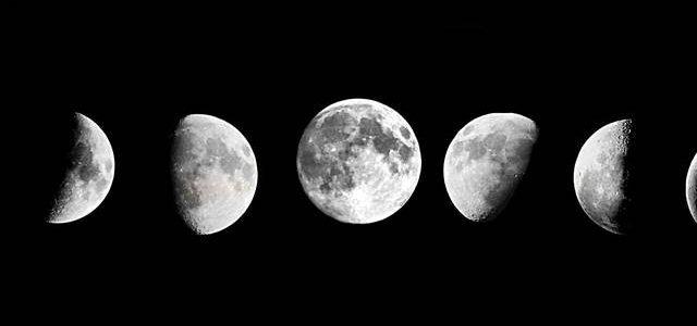 A China quer cultivar flores em solo lunar
